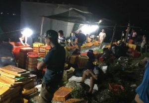 chợ hải sản nha trang